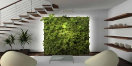 /netcat_files/multifile/2377/cover_20150827235134_Plant_Wall_Eco_Friendly_Go_Green_House_Design.jpg